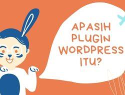 Apasih plugin WordPress itu?